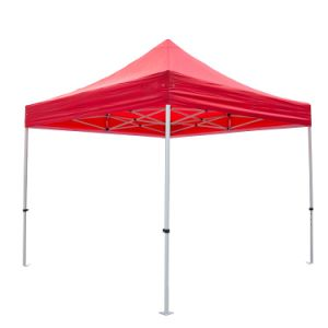 10X10FT (3X3m) Promotion Durable Folding Tent pictures & photos