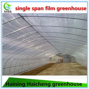 Selling Used Plastic Film Greenhouse Parts