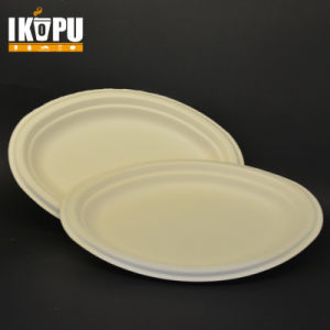 Promotion Cheap Nice White Paper Plates & China Promotion Cheap Nice White Paper Plates - China Lunch Box ...