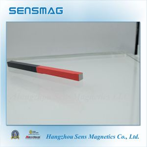 Permanent AlNiCo Magnet with Painting with RoHS pictures & photos