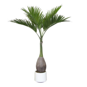 Artificial Bottom Palm with White Pot