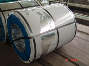 Galvanized Steel Coil /Gi