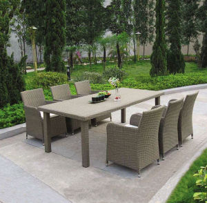 Garden Furniture (HLFA-80R263)