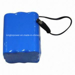 Rechargeable Lithium Ion 12V LiFePO4 Battery for Safety Device