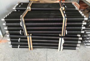 High Stainless Steel Fin Tubes-Fsi-Ssft808 pictures & photos
