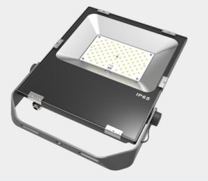 100W Outdoor/Indoor LED Flood Light