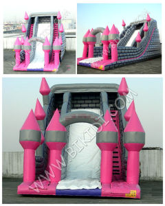 Hotsale Commercial Inflatable Bounce Slide, Water Slider B4122 pictures & photos
