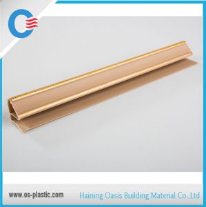 Top Angle PVC Profiles PVC Accessory Moulding pictures & photos