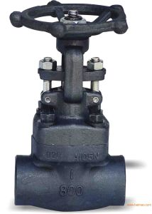High Quality of Y-Type A105 Body Gate Valve