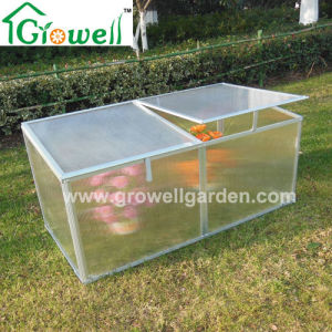 Cold Frame Mini Greenhouse for Young Plants Growing (F242) pictures & photos