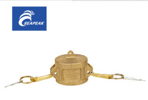 Brass Camlock Coupling Type DC pictures & photos