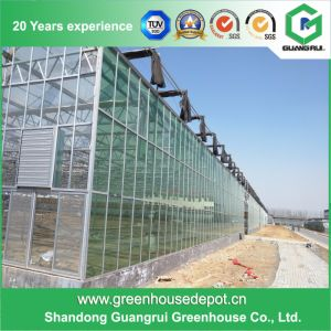 Good Price Glass Greenhouse Plastic for Modern Design on Sale pictures & photos