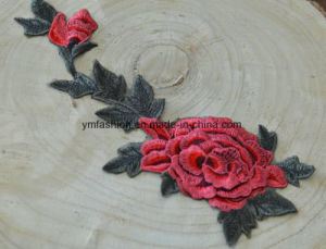 3D Garment Accessories Embroidery Patches Ym-1 pictures & photos