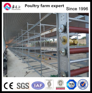 Automatic Layer Farm Equipment Layer Manure Cleaning Equipment
