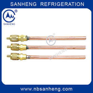 Copper Charging Valve Access Valve (AV-04) pictures & photos