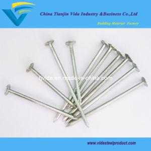 "Galvanized Roofing Nails with Flat Head (1""-7"")"