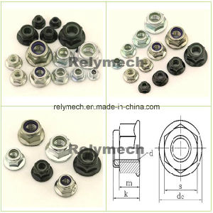 Stainless Steel/Carbon Steel Nylon Insert Hex Flange Lock Nut pictures & photos