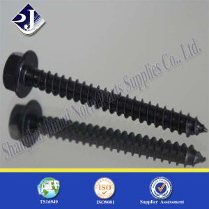 Hex Head Bolt Fastenerwood Screws pictures & photos