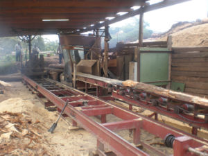 Circular Sawmill Blade Table Blade Used for Mahogany Sanders/Rosewood Saw pictures & photos