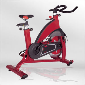 Exercise Spinning Bike, Professional Spinning Bikes Bse01 pictures & photos