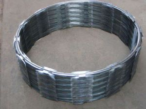 Ultra Quality Galvanized/ PVC Coated Razor Barbed Wire pictures & photos