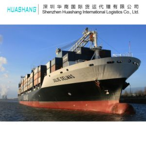 Seafreight Export to Iran From China
