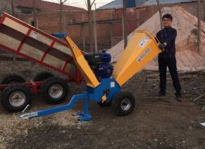 Self Powered Gasoline Wood Chipper for Sale pictures & photos
