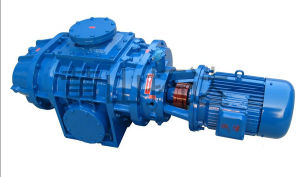 Zj-150 Roots Vacuum Pump