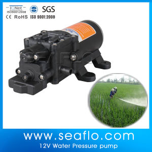 12V DC Mini Agricultural Irrigation Water Pump pictures & photos