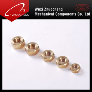 Brass Fastener Nut pictures & photos