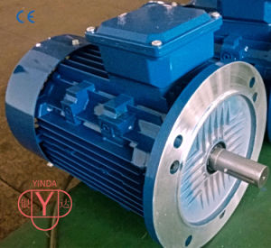 0.55 - 200 Kw Tefc Three - Phase AC Motor pictures & photos