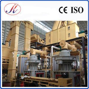 Wood Pellet Mill Line pictures & photos