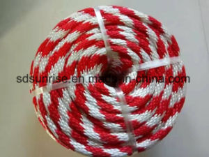 Polyamaid/PA Braided Rope in Coil Hank Reel pictures & photos