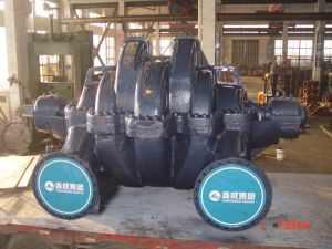 1.0m Centrifugal Pump for Bidding Double Suction Pump (SLOW900) pictures & photos