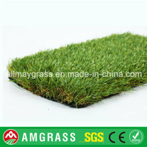 Green Field and Synthetic Grass for Garden
