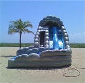 Water Slides Inflatable Curve Slide for Party B4070 pictures & photos
