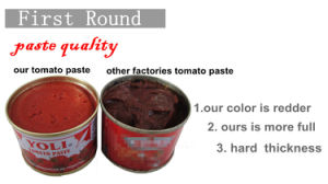 70g Tomato Paste Canned Packing with Good Canned Packing pictures & photos