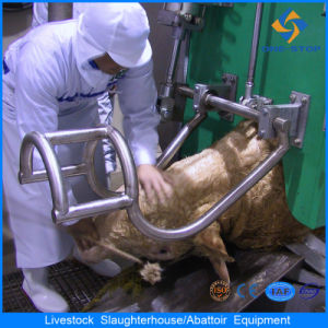 Halal Cattle Pneumatic Rotational Box Slaughter Equipment
