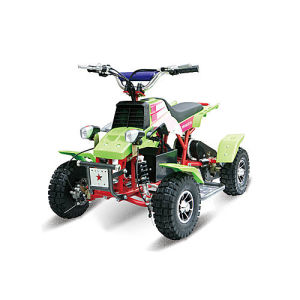 Electric ATV Quad Bike (HD350ST-3)