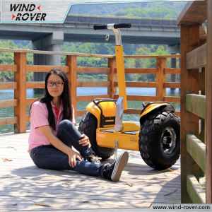 72V Lithium Battery Mobility Scooter with CE Approval pictures & photos