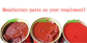 All Sizes Quality Halal Tomato Paste pictures & photos