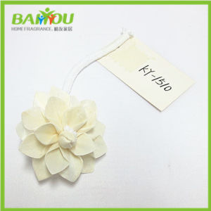 Dried Sola Flower for Reed Diffuser pictures & photos