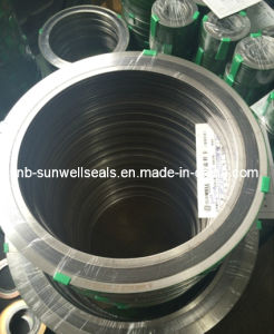Spwd/Spiral Wound Gaskets Sunwell pictures & photos