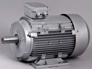Aluminum Frame Three Phase AC Motor 1HP pictures & photos