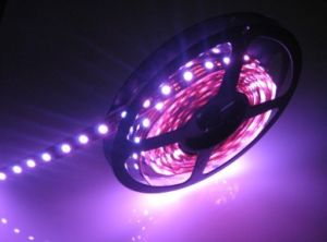 DMX RGB LED Strip Light pictures & photos