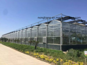Glass Plastic Film Greenhouse in Cold Weather pictures & photos