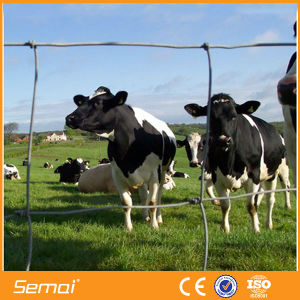 Metal Wire Mesh Cattle Fence for Farm and Grassland pictures & photos