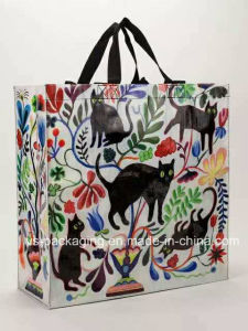 Non Woven Laminated Shopping Bag pictures & photos