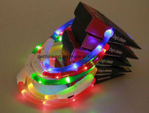USB Rechargeable Flashing Dog Collar pictures & photos
