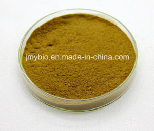 Hot Sell Natural Lotus Leaf Extract/Nucifera Extract pictures & photos